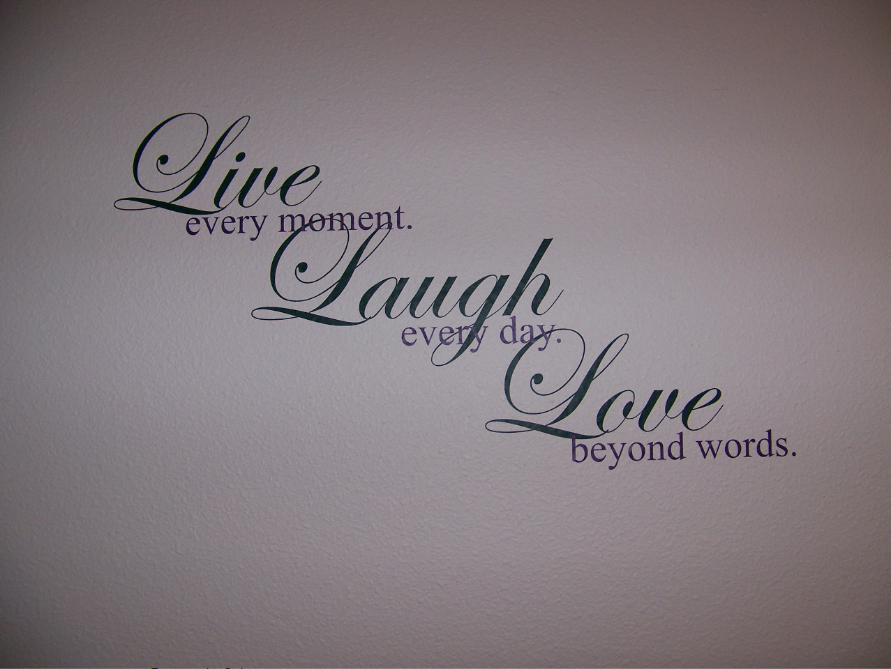 Live Laugh Love Quotes : Call today for your custom quote